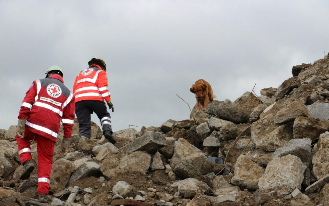 BRK-Rettungshundestaffel Kitzingen trainiert bei LZR